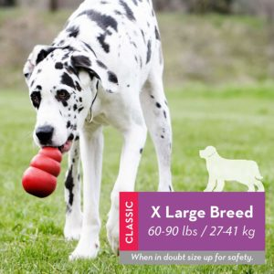 1 of the best DOG toys - The Kong X LARGE BREED