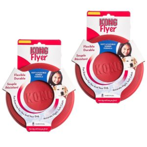 1 of the best toys for dogs : KONG FLYER