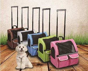 Best approved carrier for cabin travel bag for dogs