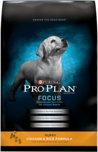 What diet for puppy? Best puppy food proplan focus