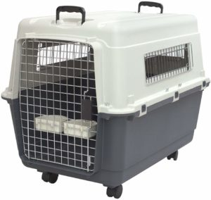 Traveling by air - Best travel crate for your dog