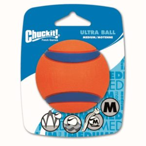 The ball - A classic and a sure value for dog