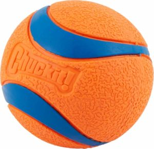 The ball - A sure value for toys dog